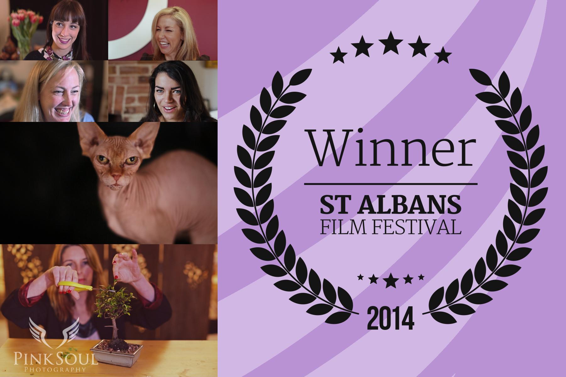 Winner St Albans Film Festival Laurels
